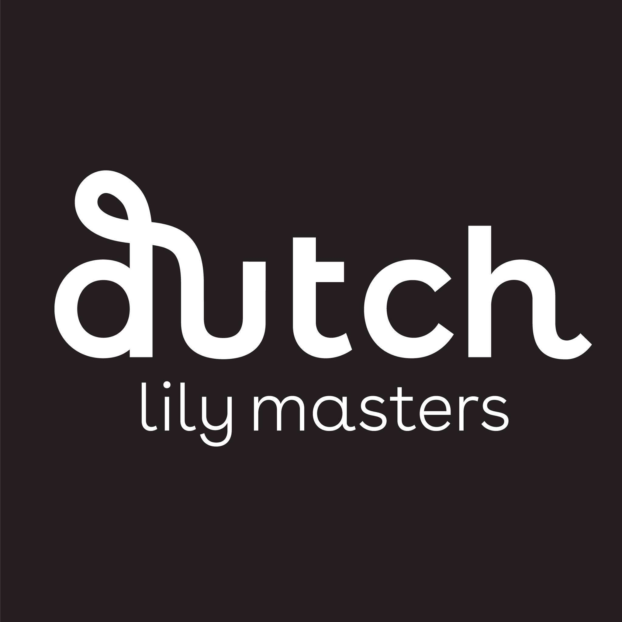 Dutch Lily Masters by Vianen Flowers